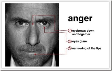 Anatomy of anger graphic found via Google